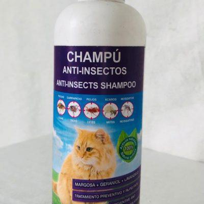 Champo para gatos anti-insectos